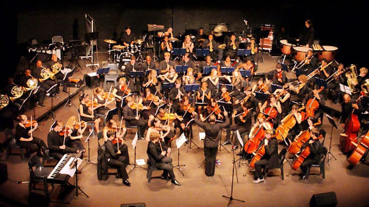 Johannesburg Youth Orchestra Anchors Naledi's