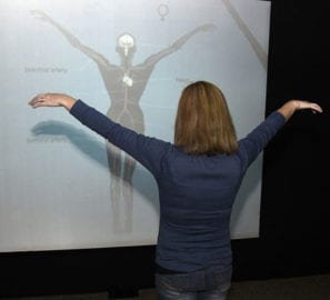 New Addition to Body Worlds Vital