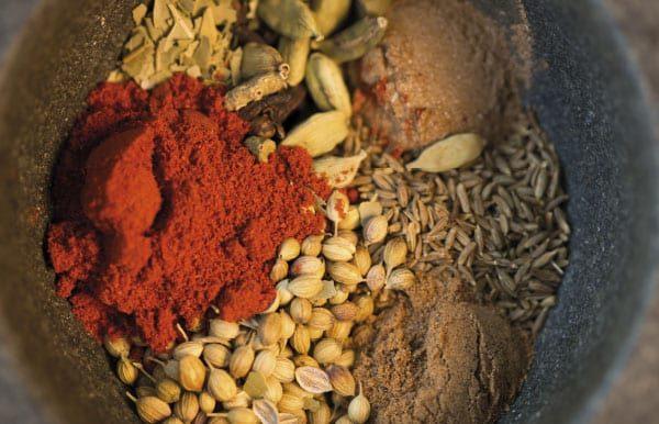 Safaris & Spices