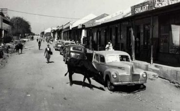 Herman Charles Bosman Joburg Johannesburg Jozi