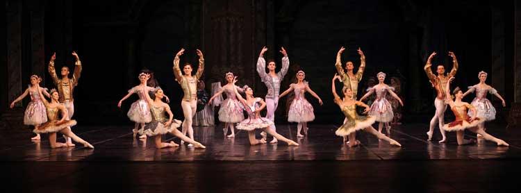 Cape Town City Ballet Sleeping BeautySleeping Beauty Amaranth dance South African
