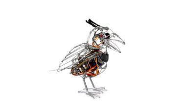 Crested Barbet African Robots Ralph Borland