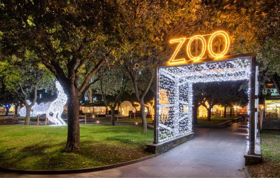 Joburg Zoo Festival of Lights and night market