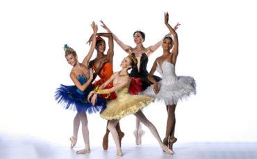 Joburg Ballet fundraiser 2020 birds bush