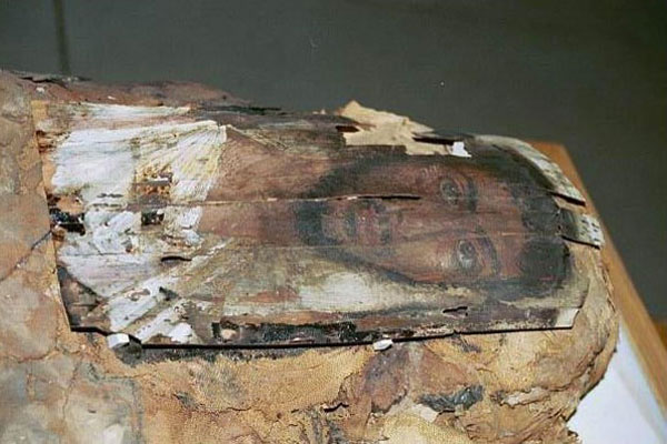 DITSONG Museum of Cultural History South Africa ancient mummy collection