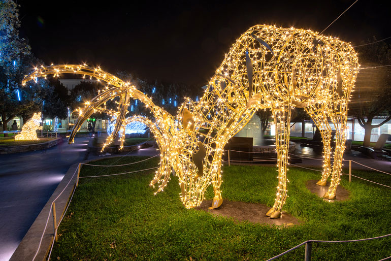 Joburg Zoo Festival of Lights family friendly outings things to do in December 2020