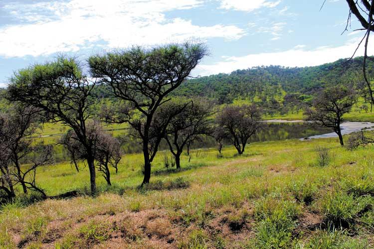 Tswaing Meteorite Crater DITSONG Pretoria activities outdoors