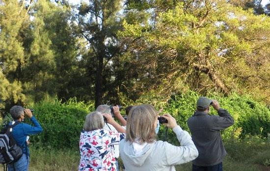 birdwatching at DITSONG